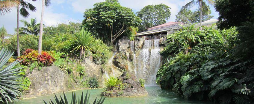 Jardin Botanique Guadeloupe Tarif