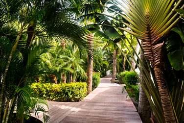Les jardins de l'hôtel sont luxuriants !