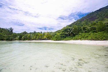 Végétation luxuriante, plages de sable fin, cocotiers..