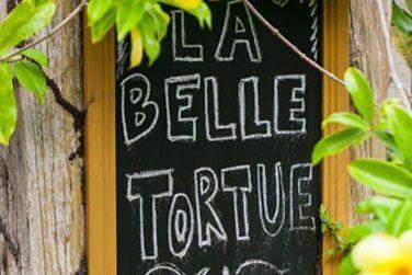 Bienvenue au lodge de La Belle Tortue, une petite structure à l'accueil chaleureux