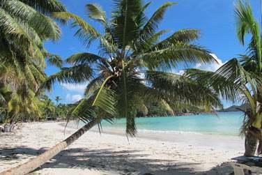 Partez explorer les petites îles voisines