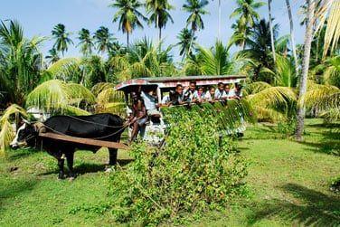 Une île authentique et très préservée, encore loin des hordes de touristes...