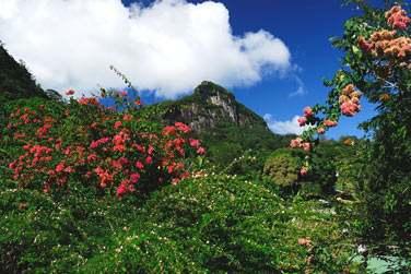 Le Copolia Lodge vous accueille en pleine montagne, dans un site préservé