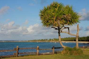 L'île Rodrigues nous emporte au rythme de sa musique pour une découverte nature..