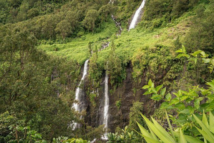 Découverte de la Réunion