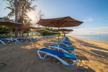 Détente et farniente vous attendent sur la plage aménagée du l'hôtel Le Nautile