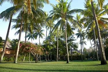Promenez-vous dans les jardins luxuriants de l'hôtel et découvrez une faune tropicale et exotique abondante