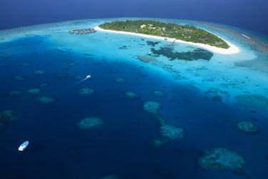 Bienvenue à l'hôtel Coco Palm Dhuni Kolhu aux Maldives