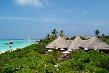 Le Conch Bar offre un cadre d'exception entre mer turquoise et végétation tropicale