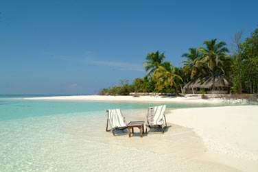 Lézardez à deux les pieds dans l'eau au bord de la plage