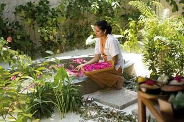 des soins complets du visage et du corps, que l'on pourra combiner à des massages aromathérapiques ou à des massages thaï.