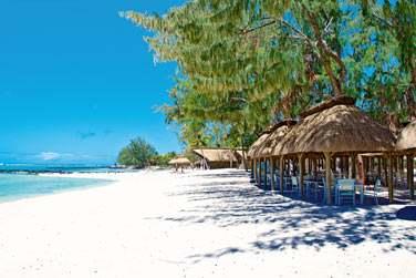 Déjeunez ou dînez les pieds dans le sable au restaurant de plage