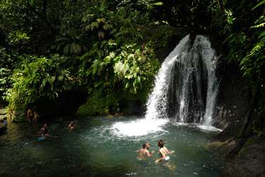 Bassin de la cascade aux écrevisses en Basse-Terre en Guadeloupe