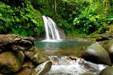 la célèbre cascade aux écrevisses en Basse-Terre en Guadeloupe