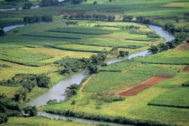 La grande rivière de Goyave en Basse-Terre, Guadeloupe