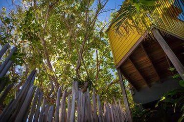 Une petite adresse secrète au sein d'un beau jardin tropical