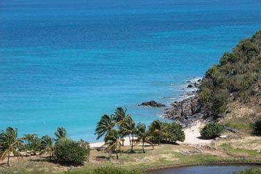 Un vrai condensé de Caraïbes