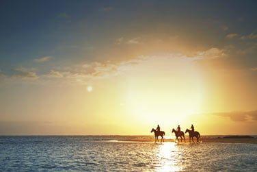 Promenade à cheval au couher du soleil...