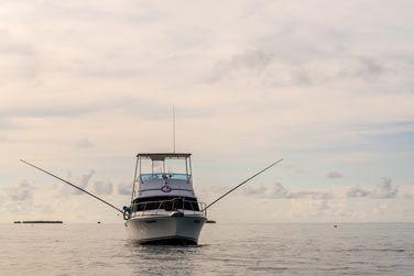 Partez au large pour une partie de pêche au gros !
