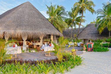 Le restaurant Bottega, une cuisine pleine de soleil qui se déguste dans un somptueux décor tropical et dans une ambiance moderne.