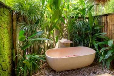 une salle de bain située dans un petit jardin