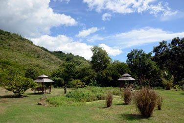 Commencez votre voyage en Martinique au Domaine de la Palmeraie!