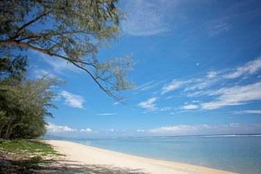 l'hôtel est bordé par une longue plage de sable blanc