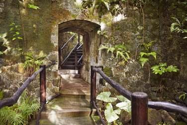 Le Rainforest Spa vous propose une grande variété de traitements