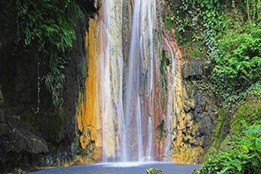 Explorez la beauté remarquable de la nature de l'île