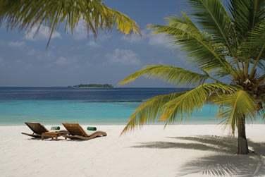 Plages de sable fin, palmiers et lagon turquoise... Un véritable décor de carte postale