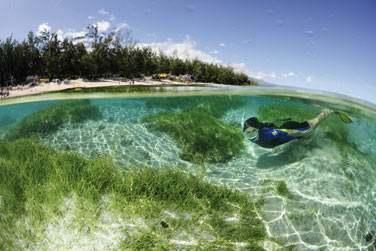 L'endroit est idéal pour se baigner en toute sécurité dans le lagon