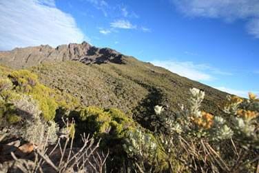 La Réunion vous offrira une multitudes de paysages et de rencontres ..