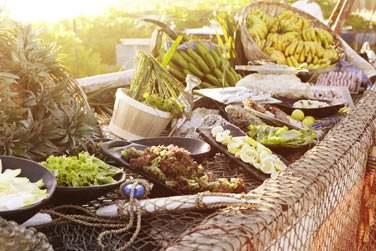 ..à l'organisation de pique-nique afin d'apprécier des produits locaux, cultivés sur des terres encore sauvages.