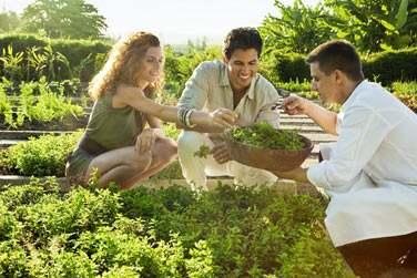 auprès des fermiers et des pêcheurs locaux pour proposer une cuisine à base de légumes et herbes cultivés sur le domaine
