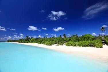 Une sublime plage de sable blanc bordant les eaux cristallines du lagon