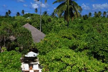 Allée menant à la plage depuis une Beach Villa. Au coeur de cette végétation luxuriante, intimité garantie !