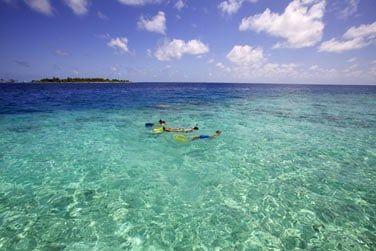 Partez à la découverte de la faune et flore marine du lagon