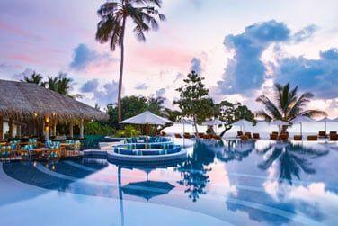 Une piscine se mêlant parfaitement à cette atmosphère paradisiaque...