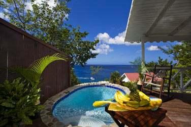 La piscine privée du Cottage avec piscine et une vue splendide sur la mer !