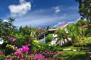 les cottages sont disséminés au coeur de la végétation tropicale