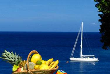 Profitez d'une superbe vue sur la mer depuis votre Cottage avec piscine