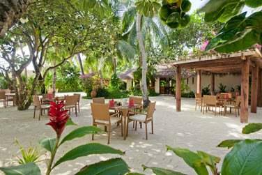 Island Coffee Shop propose des repas toute la journée, composés de menus du monde entier.