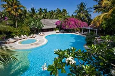 Ou dans la piscine située au coeur de la végétation tropicale