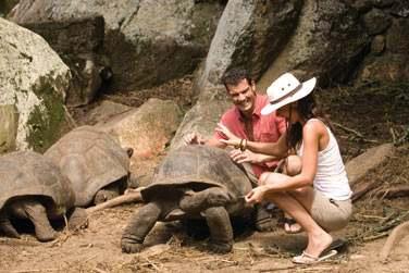 Bon séjour aux Seychelles !