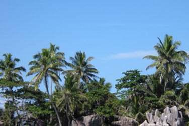 En 8 jours, parcourez l'archipel des Seychelles