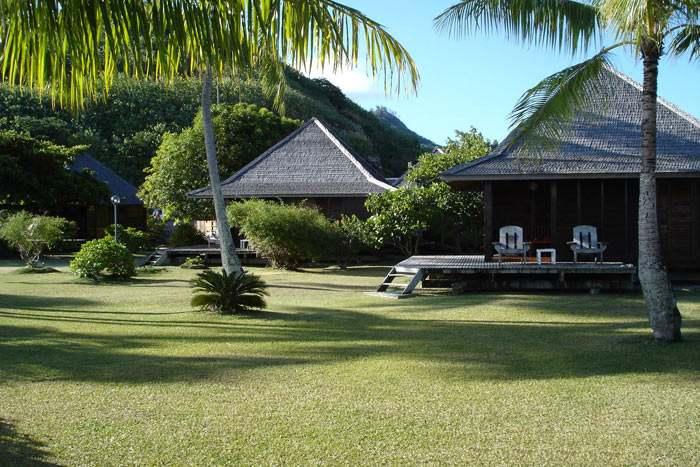 bungalow vue jardin