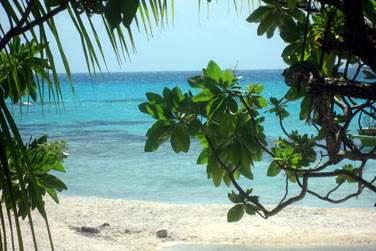 Les plages magnifiques de l'île aux Récifs..