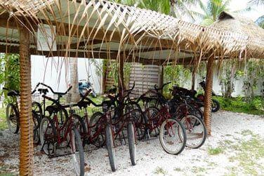 Ou arpentez l'île à vélo pour y découvrir sa superbe nature tropicale