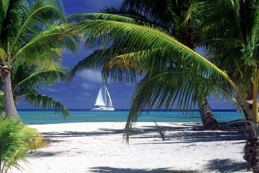 Des noms aux sonorités tropicales qui invitent au voyage et au dépaysement...