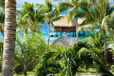 Les bungalows sont disséminés sur la plage, dans le jardin ou posés sur l'eau